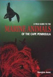 Bookshelf: A Field Guide to the Marine Animals of the Cape Peninsula