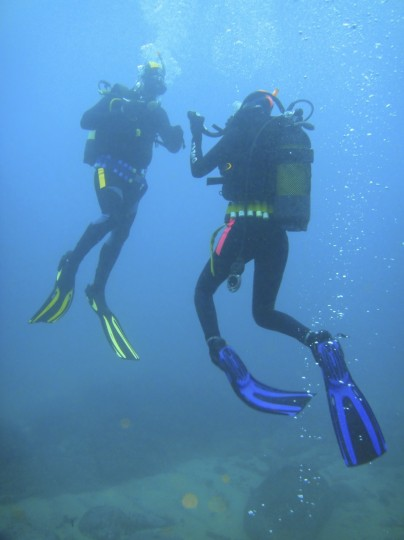 Craig and Lynette ascend after the dive