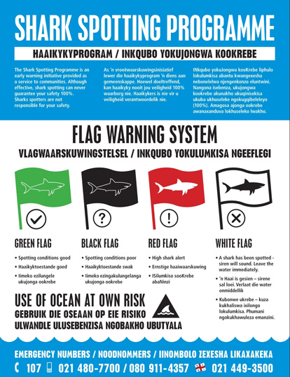 Shark Spotters flags