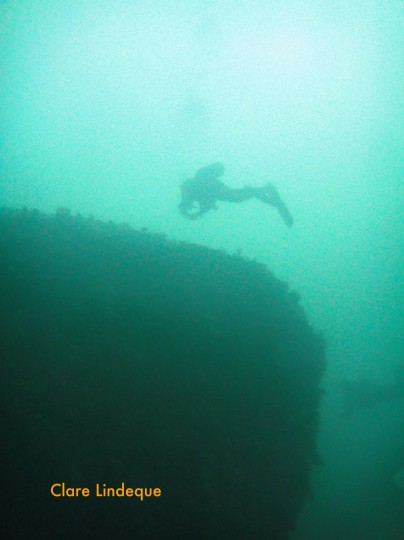 A diver over the stern of the Princess Elizabeth