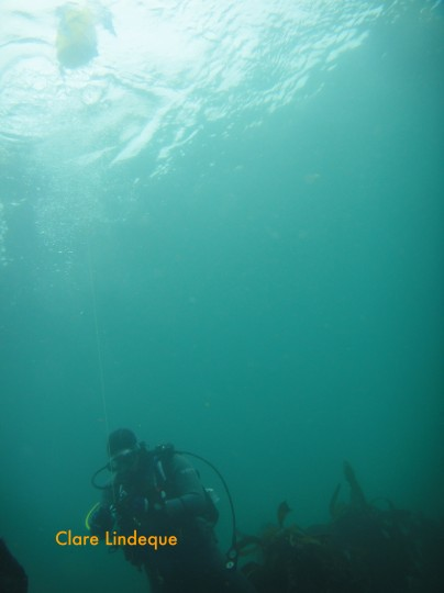 Kate with the buoy line in top to bottom visibility
