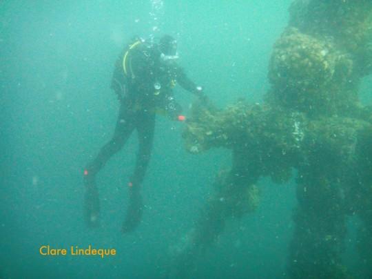 Dive sites: MV Aster