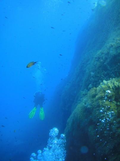 Diving a wall at Cirkewwa