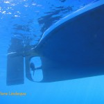 The propeller and rudder of our diveboat