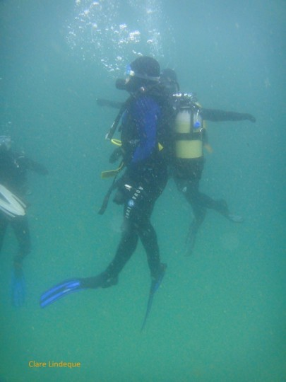 Keren ascending after her first boat dive as a qualified Open Water diver