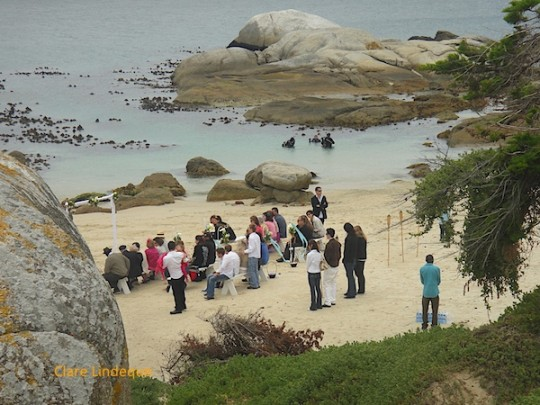A wedding at Windmill, with divers emerging (James Bond-like) from the sea in the background