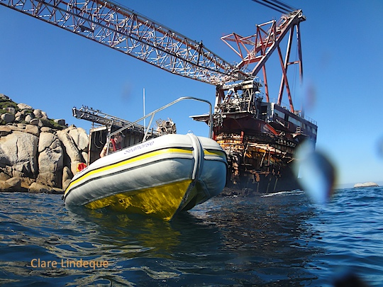 Cape Town's visible shipwrecks