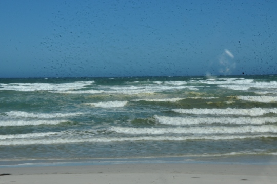 Green water at Strandfontein