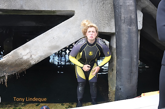 Emerging from under the jetty