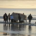 Trek net fishermen push the trailer into the shallows