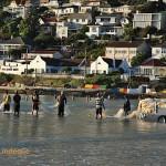 The trek net fishermen handling the net