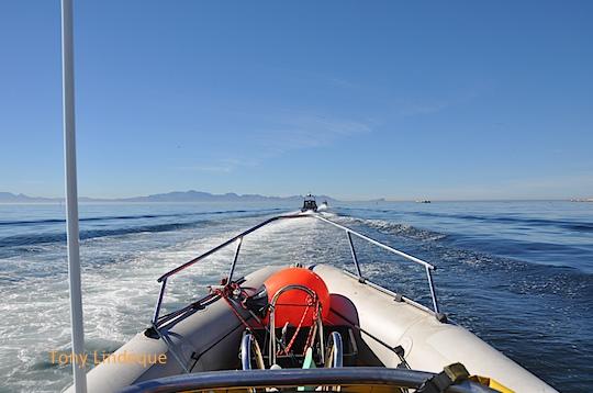 Speeding into the bay