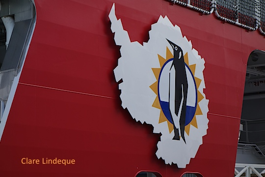 Penguin on the Antarctic continent adorning the side of the vessel