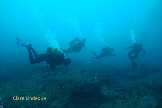 Dive sites (Durban): Blood Reef (Doug's Cave to Birthday