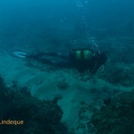 Tony on the reef