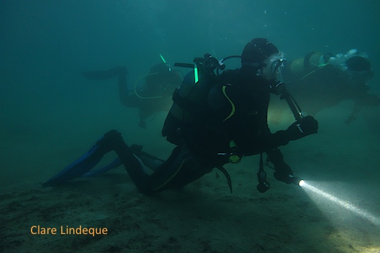 Liam on the night dive