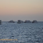 Liveaboards at Sha'ab Abu Nuhas