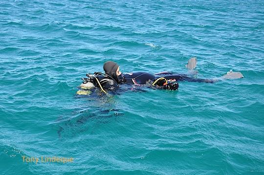 Rescue skills