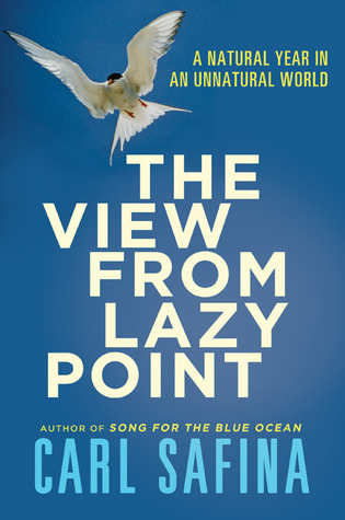 Bookshelf: The View from Lazy Point