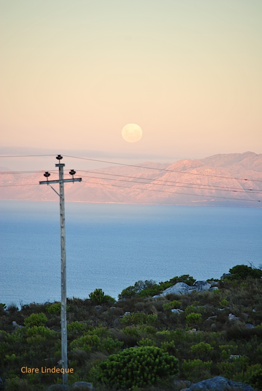 Moon rising over False Bay
