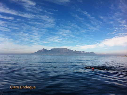 Table Mountain and a swimmer