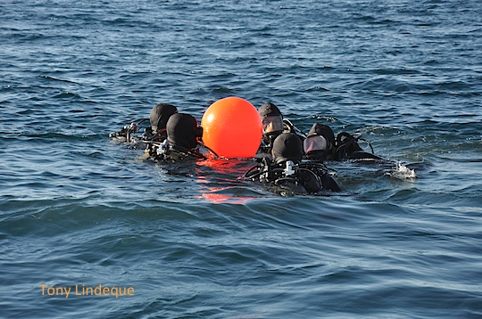 Huddle around the buoy
