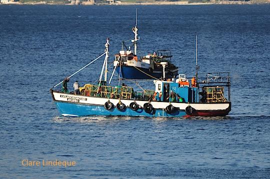 Fishing boat at FIsh Hoek