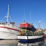 Fishing boats in Kalk Bay