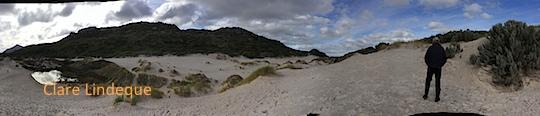 Tony on the dune field
