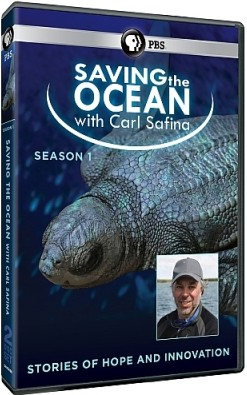 Saving the Ocean with Carl Safina
