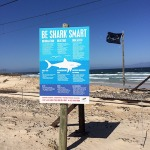 The usual Shark Spotters sign at Glencairn
