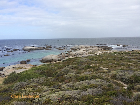 The secluded bay at Millers Point