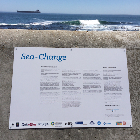 The Sea-Change project