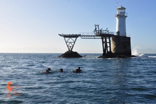 Divers at Roman Rock