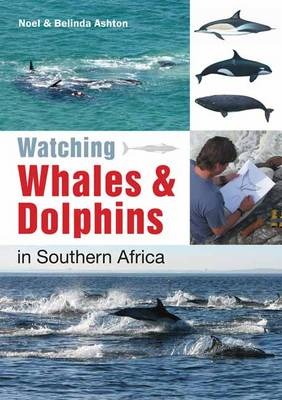 Bookshelf: Watching Whales & Dolphins in Southern Africa