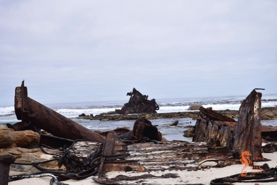 Visible shipwrecks: Thomas T Tucker