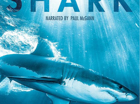 BBC Shark