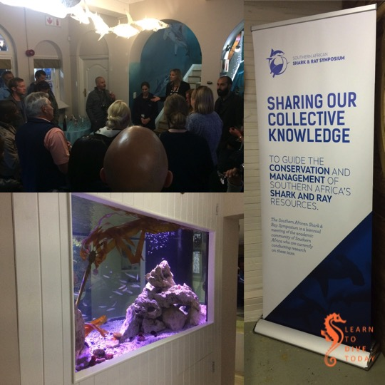 Southern African Shark & Ray Symposium 2015 – welcome evening & public events