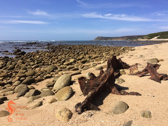 Visible shipwrecks: SS Kadie