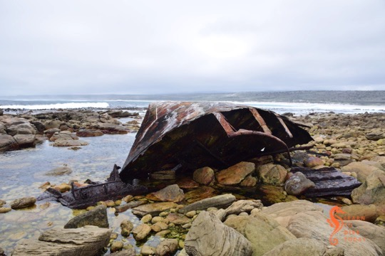 Visible shipwrecks: FV Phyllisia