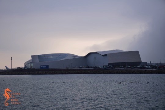 A visit to the Blue Planet aquarium in Copenhagen