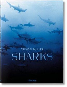 Bookshelf: Sharks