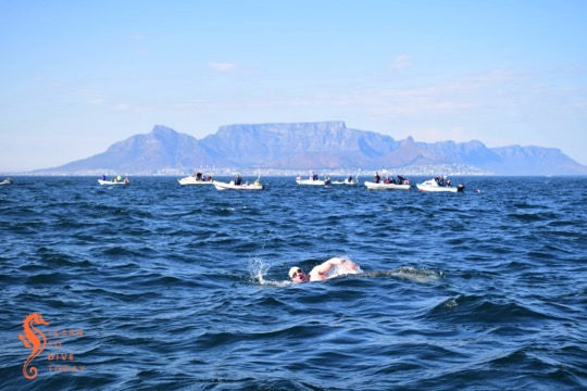 Colin swimming across Table Bay