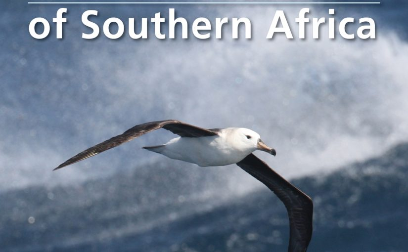 Bookshelf: Guide to Seabirds of Southern Africa