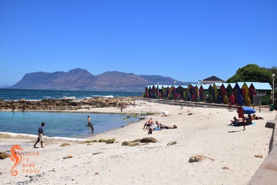 City of Cape Town's new protocol for cleaning tidal pools