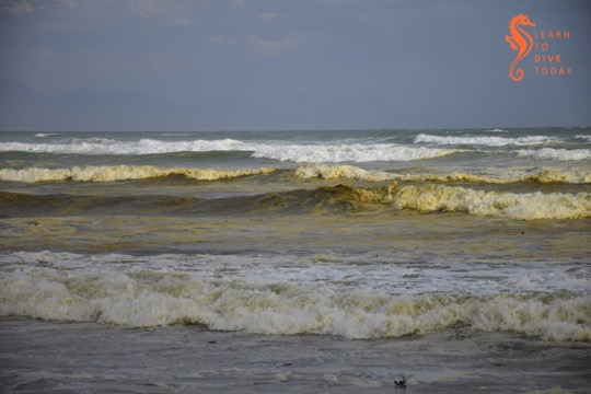 What causes the brown water at Muizenberg beach?