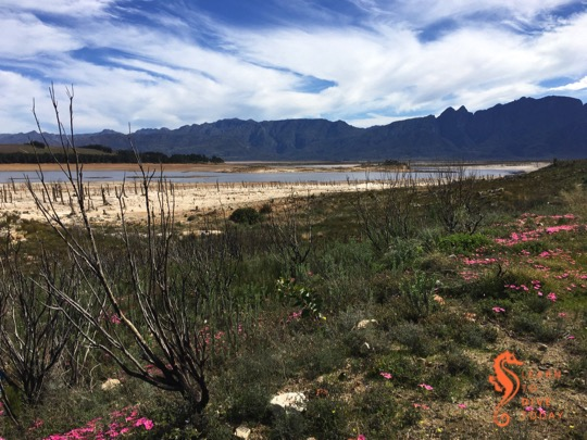 Mythbusting solutions to Cape Town's water crisis