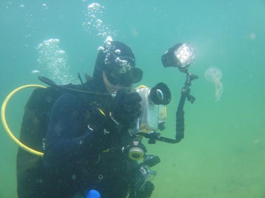 Tony filming a jellyfish