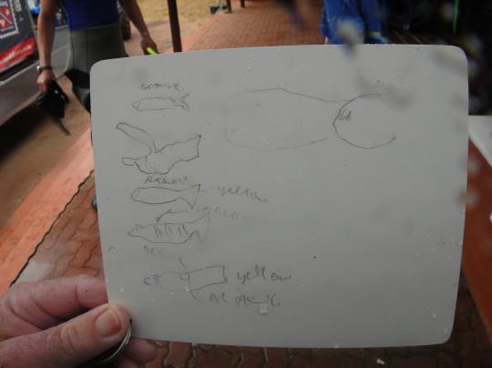 Gerard's fish ID slate