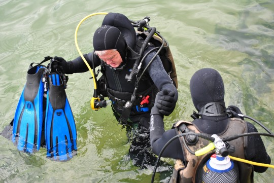 Diving as a career